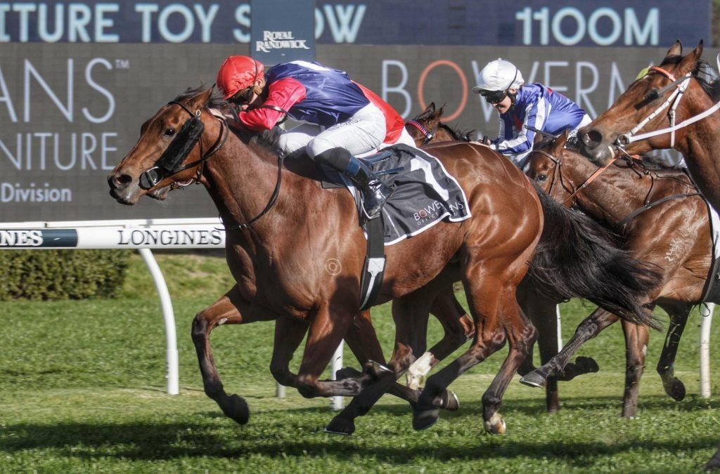 Group 3 winner heads big day for Boomer Bloodstock purchases