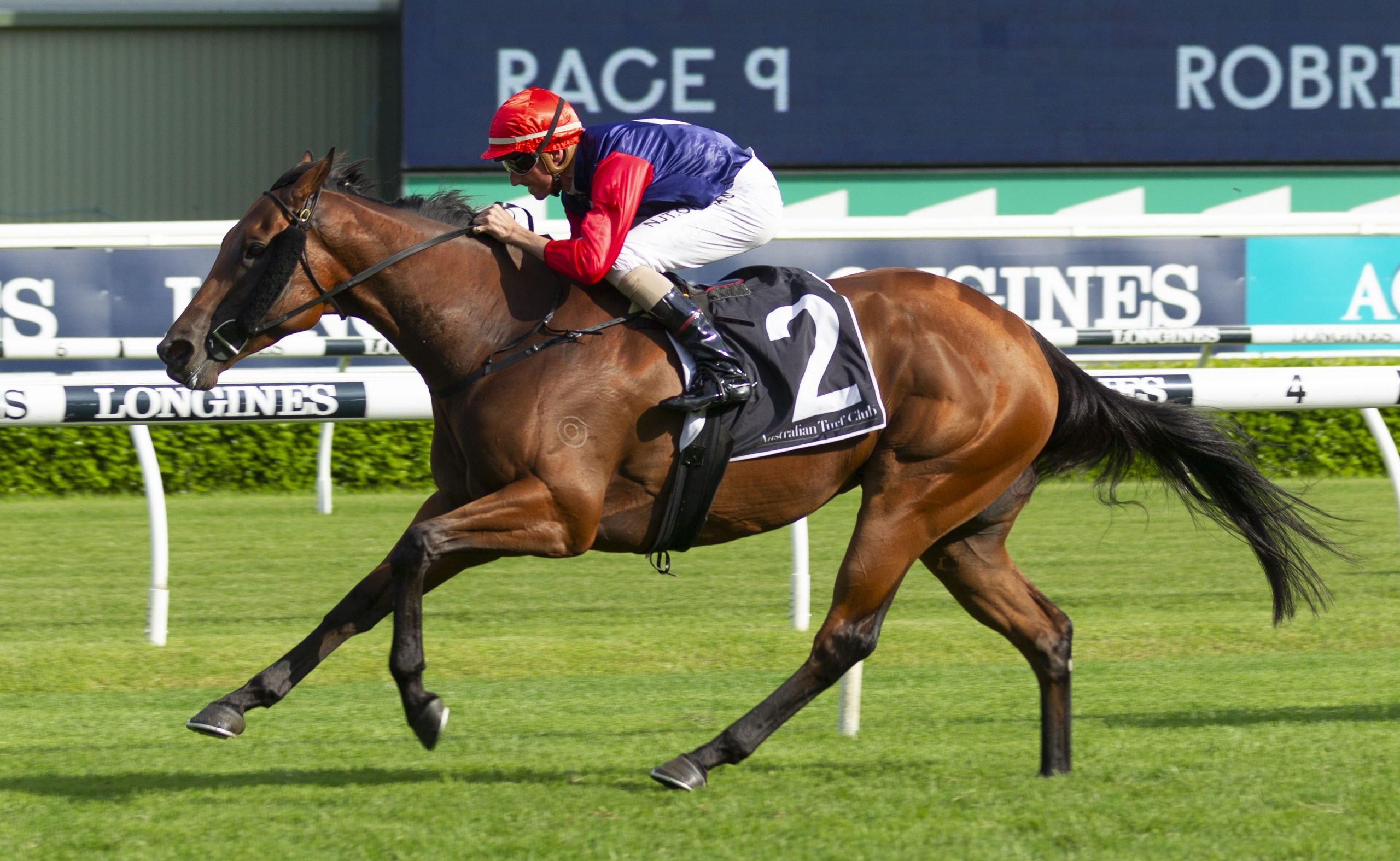 Stakes victory for Sweet Deal
