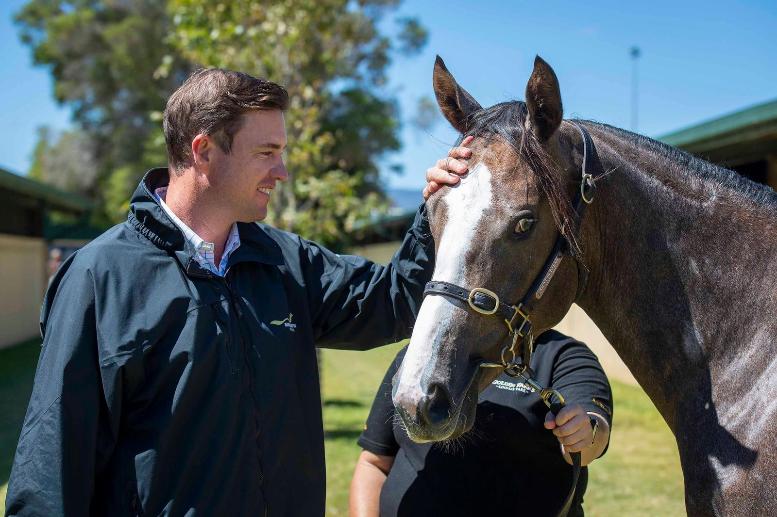 Buying American Mares: What are the costs involved with buying a broodmare in USA and importing to Australia?